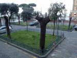 Sorrento alberi tagliati al Porto e al Loreley