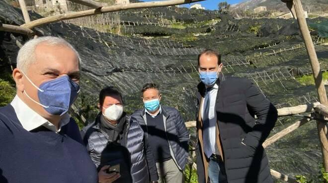 L'assessore all'Agricoltura della Regione Campania Nicola Caputo in visita alla costiera amalfitana