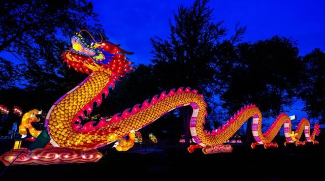Questo è l'anno del bue, storia e tradizione della festività cinese