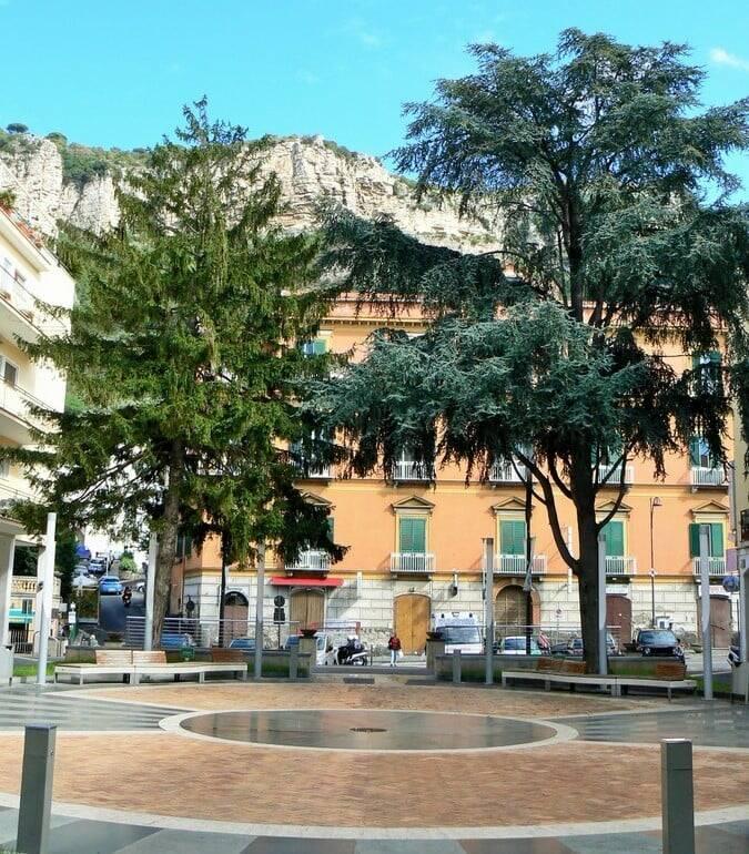 Abete Piazza Veniero a Meta