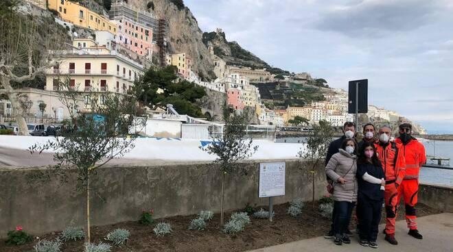 Amalfi ulivi per le vittime del Covid