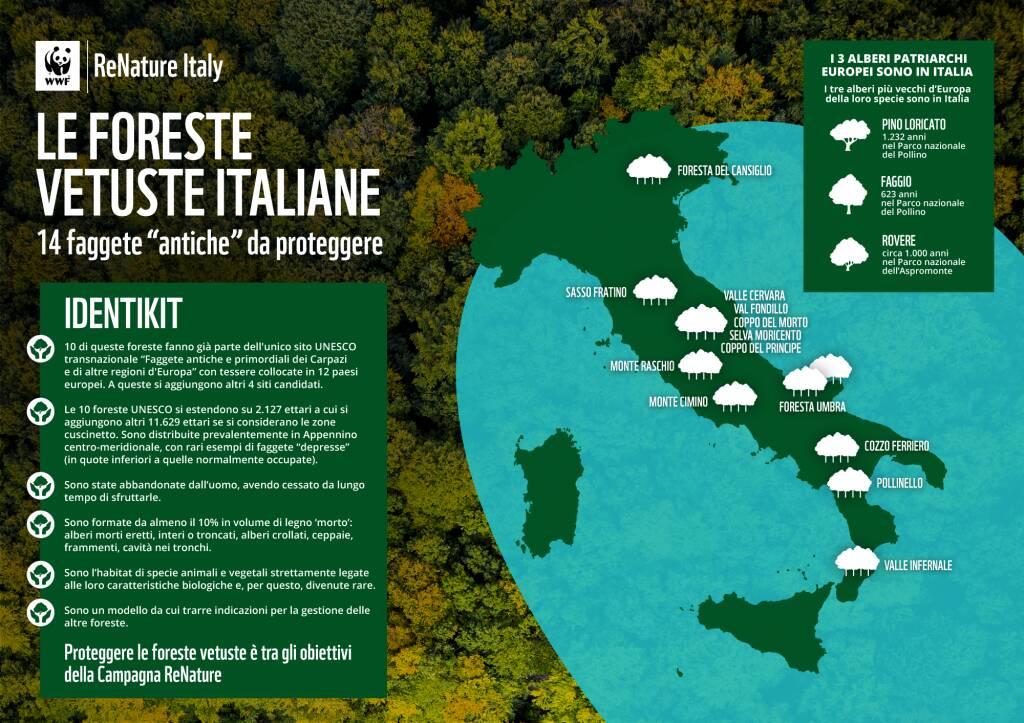 Domenica 21 marzo è la Giornata mondiale delle foreste