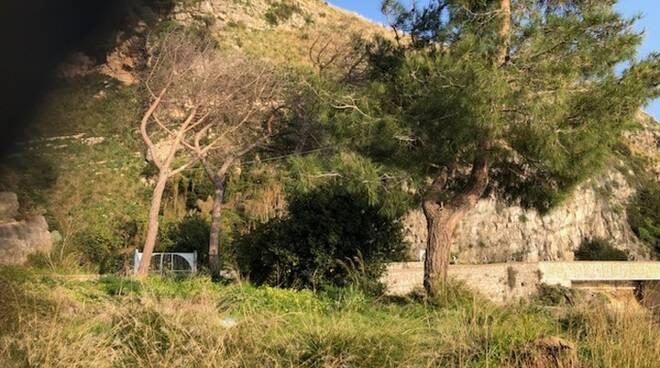 Ex pineta sulla SS163 a Tordigliano: intervengono i sindaci di Positano e Vico Equense