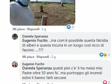 Il post di Eugenio Fucito sulla Pineta
