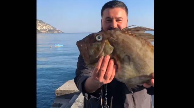 Peppe Di Napoli a Positano: nel video ci mostra il pescato del giorno