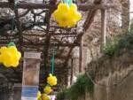 Positano si veste di giallo per la Festa della Donna: palloncino a forma di mimosa in Via del Mulini