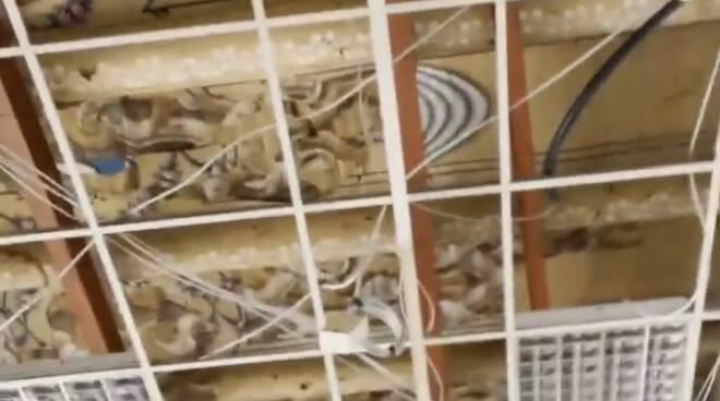 Vietri sul Mare: rimossa la controsoffittatura, scoperto un dipinto nascosto