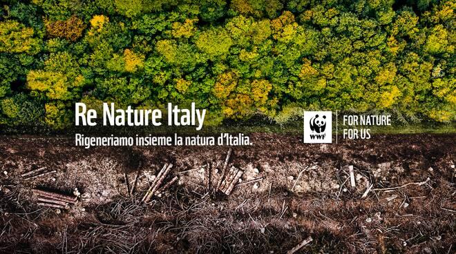 """WWF svela il nuovo report """"Valore Natura"""". Benefici fino a 170 miliardi di dollari l'anno"""