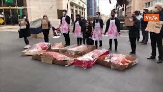 Cadaveri umani confezionati, flashmob shock a Napoli contro l\'uccisione degli agnelli a Pasqua