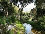 """I Giardini \""""La Mortella\"""", ricordando Lady Walton a dieci anni dalla scomparsa"""