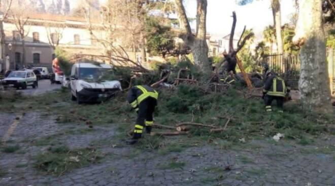 Cava de'Tirreni, nuovo abbattimento di alberi pericolosi all'orizzonte