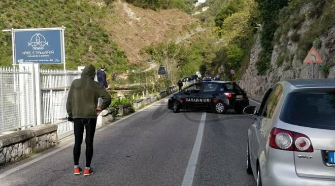 Cetara, mucca sulla carreggiata: strada interrotta