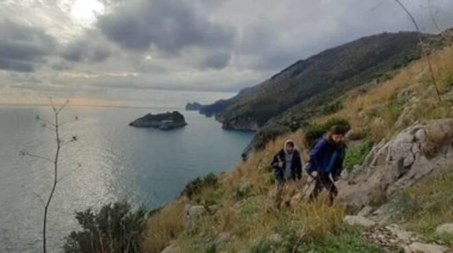 City Nature Challenge 2021, 4 giorni di escursioni. Iniziativa dal 30 aprile al 3 maggio a Massa Lubrense