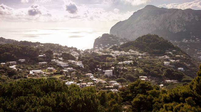capri green