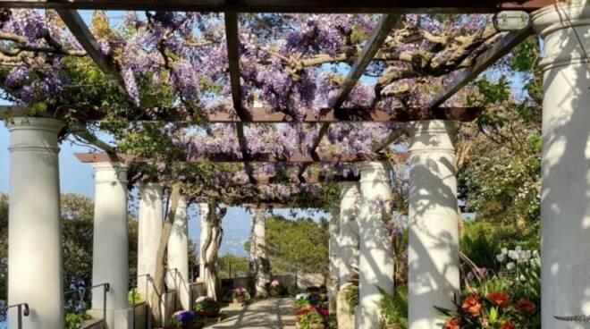 Capri, svolta per Villa San Michele: riapertura entro fine mese