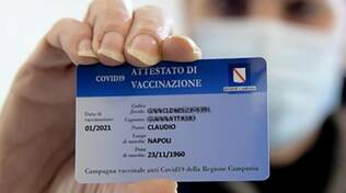 card vaccinale