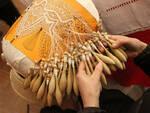 L'arte del tombolo in costiera amalfitana, una tradizione da salvaguardare