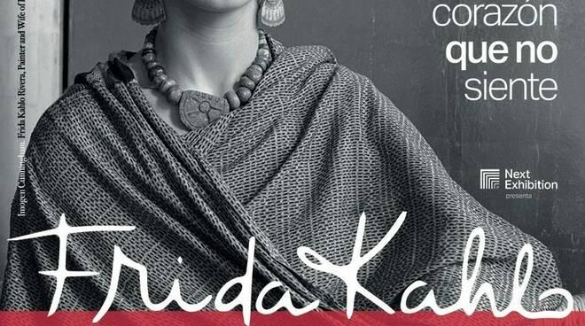 Manifesto Frida Khalo - PAN