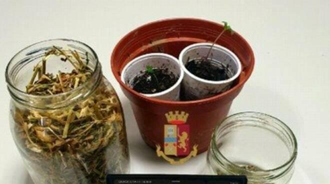 Massa Lubrense, deteneva droga in casa