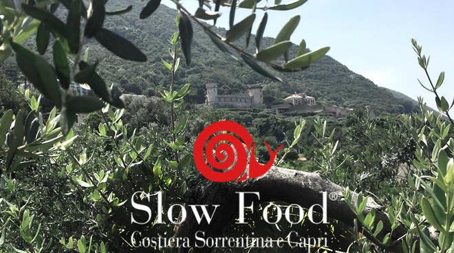 Nasce la comunità slow per la costituzione del secondo biodistretto della Campania