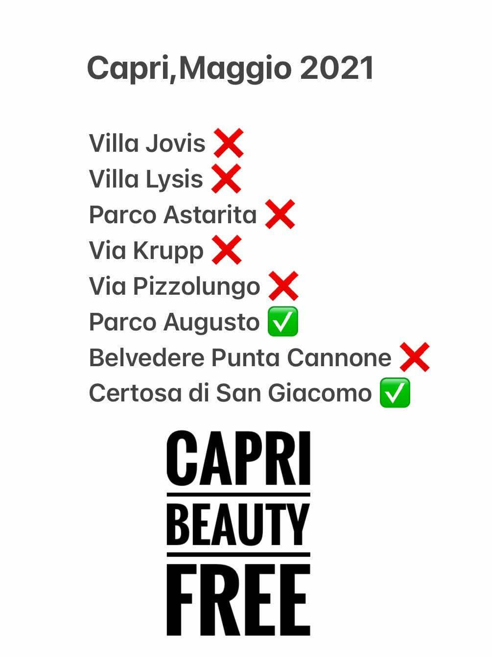 """Roberto Bozzaotre: """"Degrado e disorganizzazione rendono Capri Beauty Free"""""""