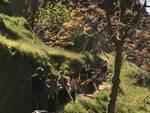 Sentiero degli Dei preso d'assalto: è boom tra Agerola e Positano