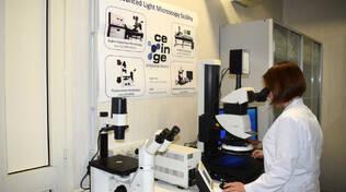 Al Ceinge di Napoli scoperti anticorpi efficaci contro il Covid e la variante inglese