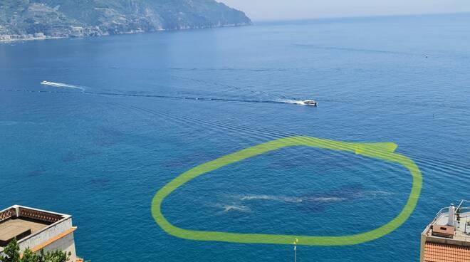 Mare sporco a Castiglione di Ravello