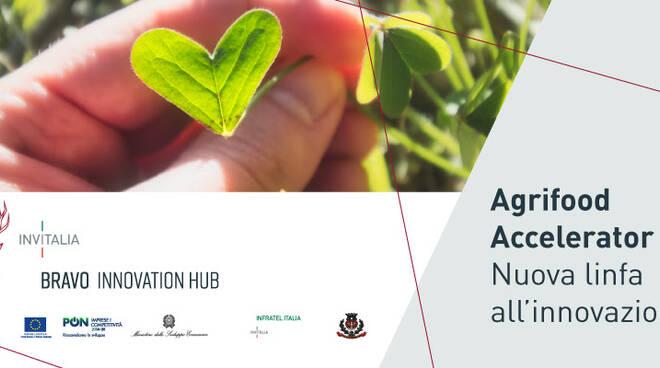 Distretto Turistico Costa d'Amalfi: BRAVO Innovation HUB Agrifood, grande opportunità per gli imprenditori del settore