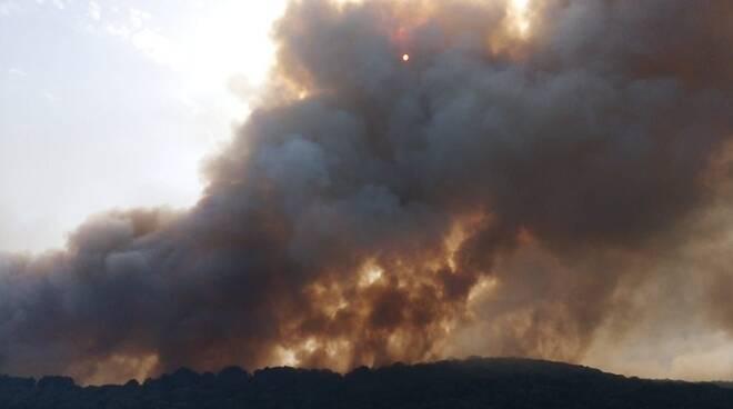A fuoco anche la Penisola Sorrentina: fiamme in area SIC: brucia Torca e Crapolla