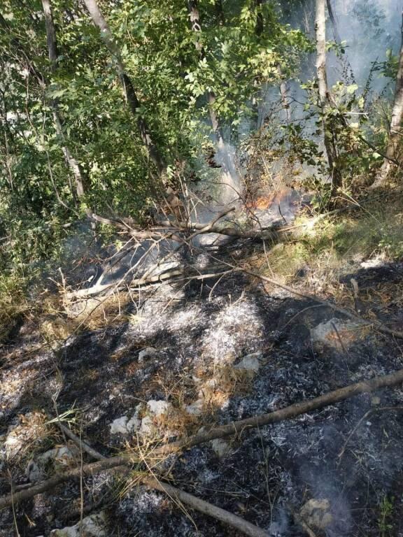 Cava de' Tirreni: tentativo di incendio a Monte Caruso