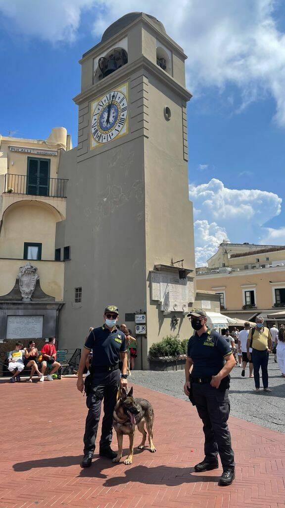 Controlli anti droga a Capri: in piazzetta le unità cinofile