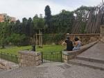 Sorrento, in Piazza Lauro un'aiuola riservata ai nostri amici a quattro zampe