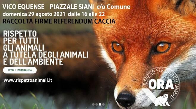 """Vico Equense, al via la raccolta firme per il referendum sulla caccia. """"Ora rispettiamo gli animali"""""""