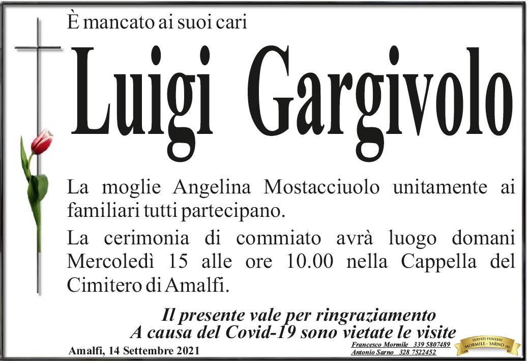Amalfi, è venuto a mancare Luigi Gargivolo
