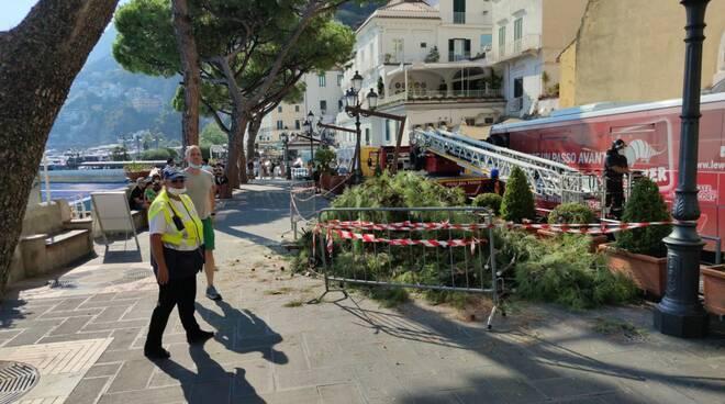 Amalfi, stradone interdetto per ramo di albero a rischio. Aggiornamenti