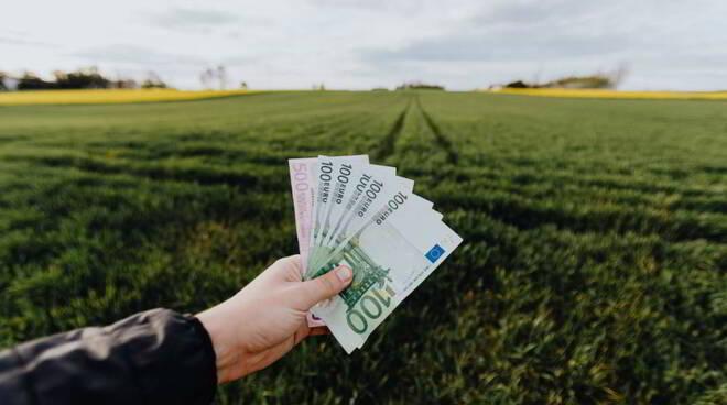 Come investire i propri risparmi (o piccole somme di denaro): guida per far fruttare i soldi