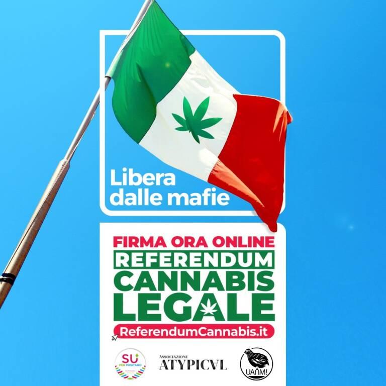 Costiera Amalfitana: anche il Collettivo UANM aderisce al Referendum sulla depenalizzazione della cannabis