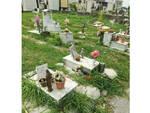 Profondo Rosso, lo stato di abbandono del cimitero di Castellammare di Stabia