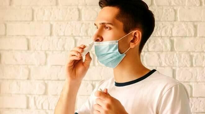 Spray nasale contro il Covid con i nanocorpi dei lama