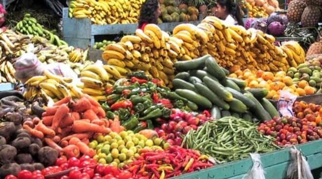 Capaccio, una donna aggredisce un venditore ambulante di frutta poiché esasperata dalle sue continue avances